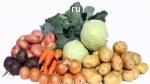Картофель, свекла, морковь, лук и капуста оптом!