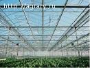Ключевые факторы роста тепличной продукции