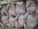 Куриное мясо от производителя 68руб