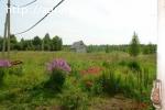 Сдам или продам 20ГА земли сельхозназначения (КФХ)